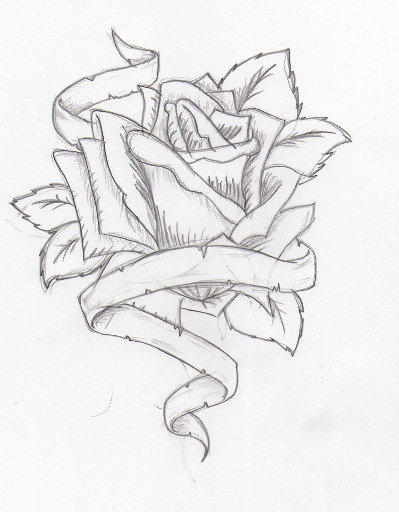Sketch Of A Rose Tattoo Images amp Pictures Becuo
