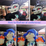 HOW TO FIND ME AT ANTHROCON!