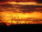 orange sky by monyczka