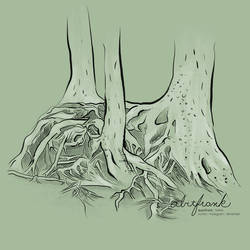 Tree Root Tangle (Study)