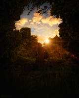 The Last of Us - Home by markovic19
