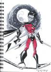 Sketch::Robin