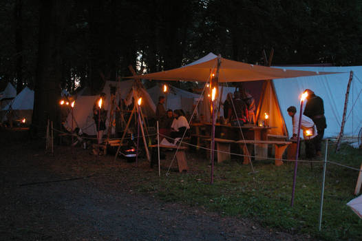 Viking Camp at Night
