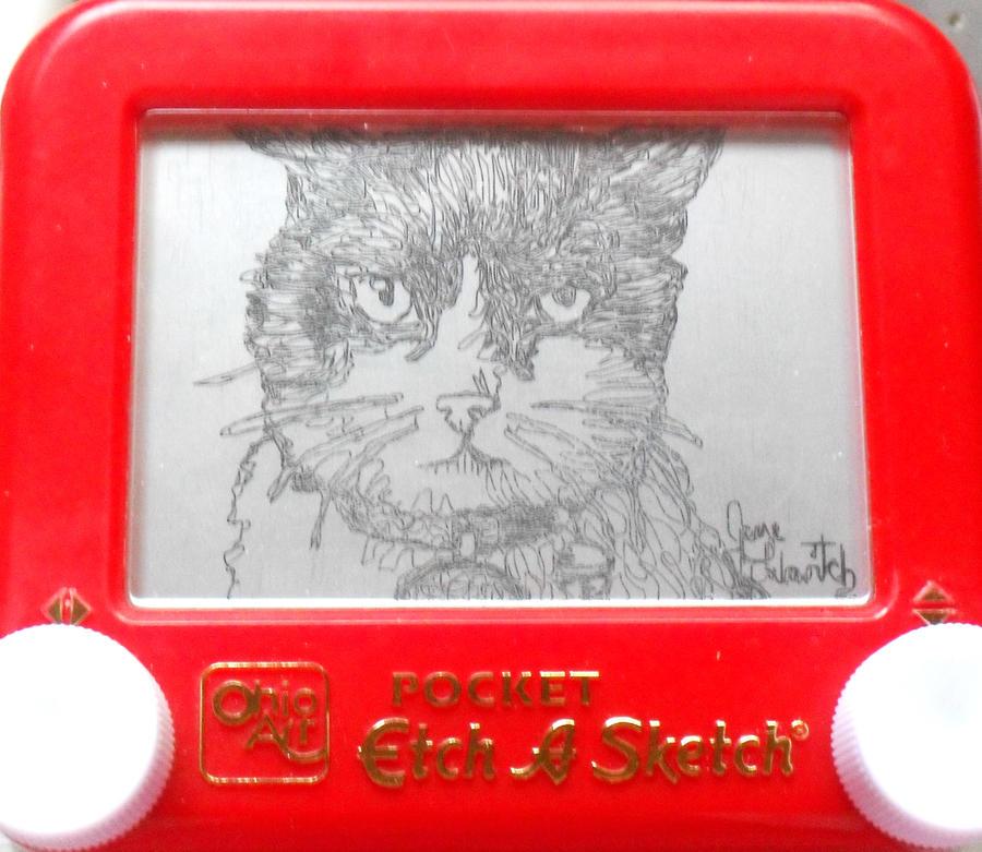 Kitty cat etch a sketch by pikajane