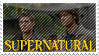 Stamp - Supernatural by AmyRose-Chan