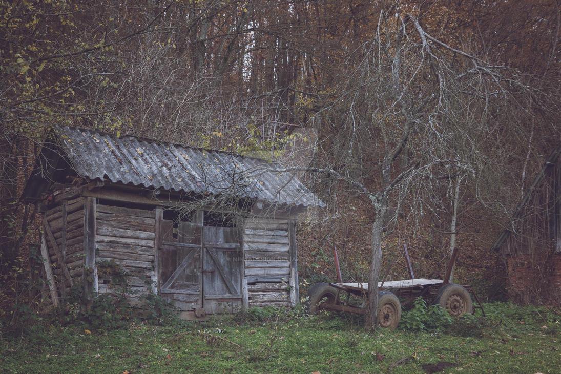 Old shack by NinjaDesign