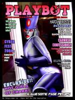 TF - Playbot cover 1 by Shinjuchan