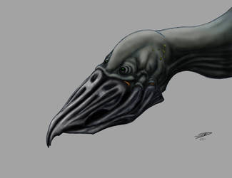 Bird by Gagearin