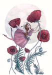 Red Poppy and the Ladybug
