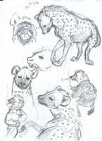 Hyena sketch by NixTiredBrain