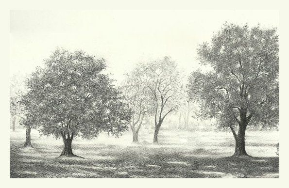 Tree garden by aakritiarts