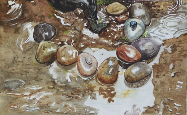 Garden rocks by aakritiarts