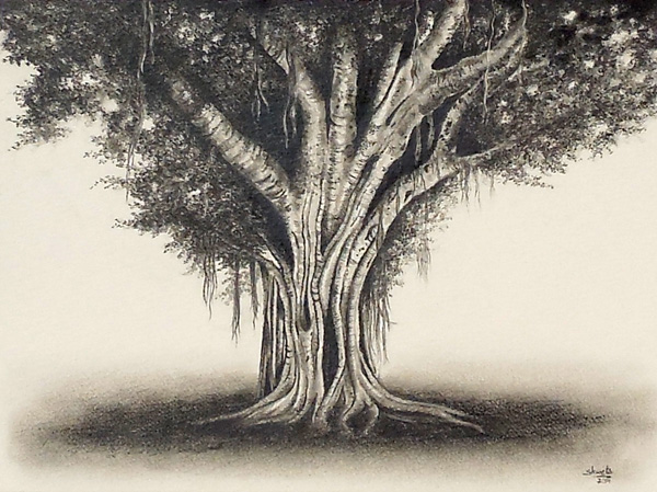Banyantree by aakritiarts