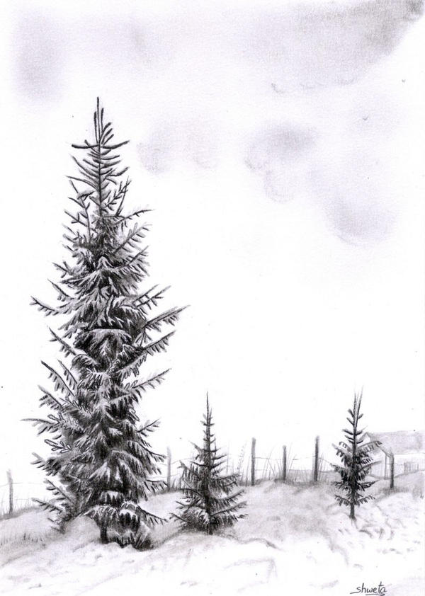 Winter trees by aakritiarts