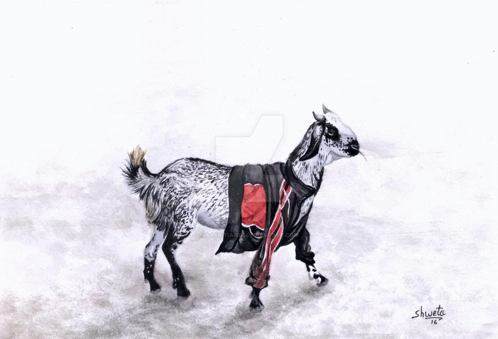 Goat in a jacket by aakritiarts