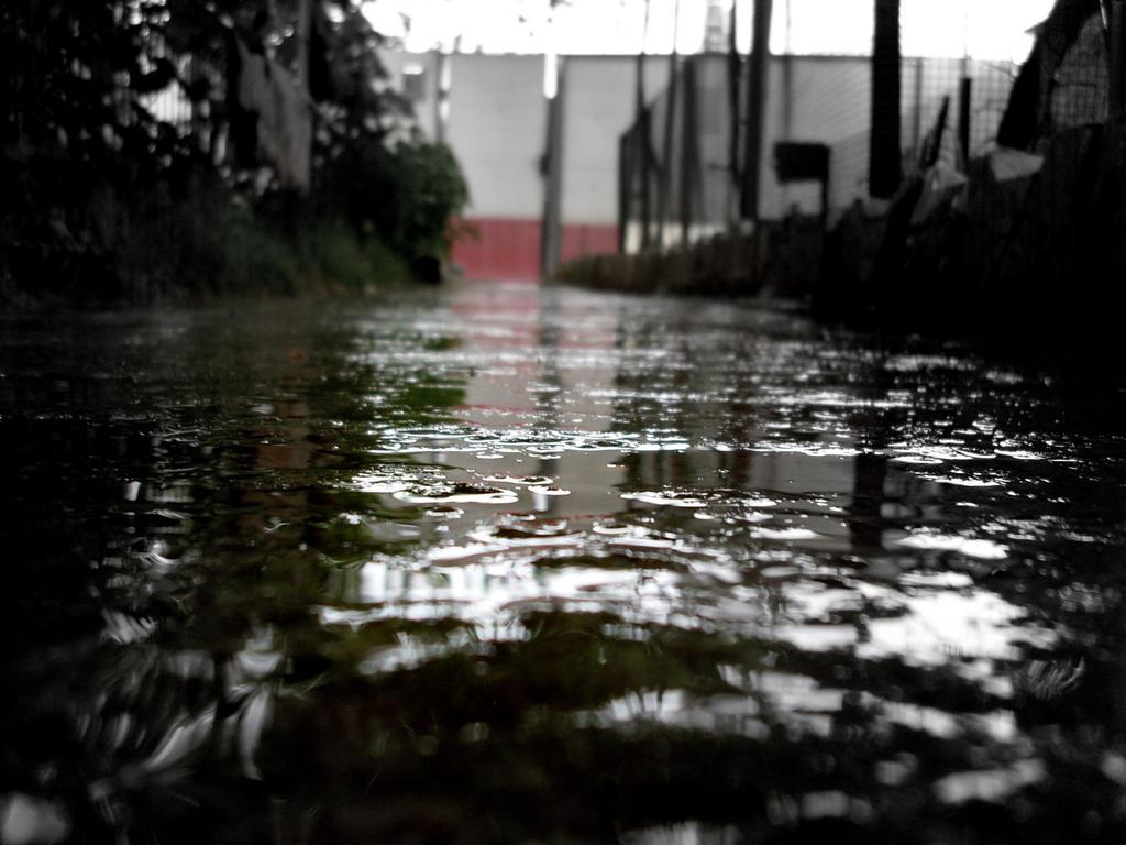 ..summer rain... by thetragiclullabyofaf
