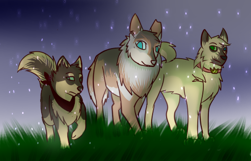 The cool doges by AestheticTotem