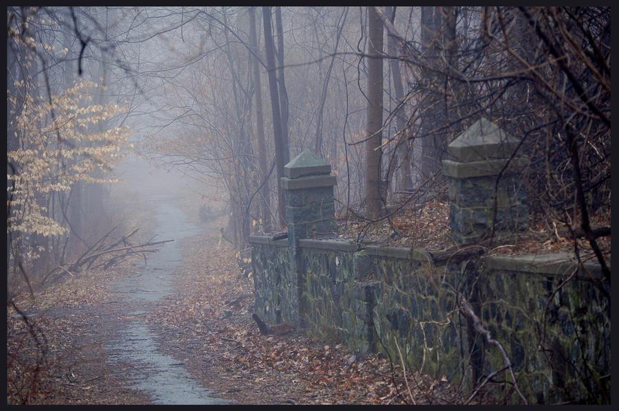 Foggy Path By Dark4maxine On Deviantart