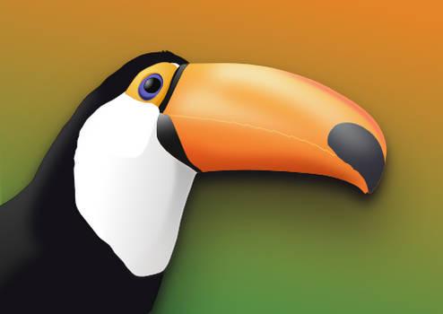 El Toucan