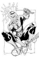 Spiderman SuperShow2011 by RobertAtkins