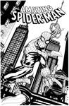 Sketch Cover Spider-Man 2 SOTD