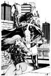 JLA Jan. Black Canary and Huntress SOTD