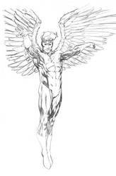 Angel SOTD pencils