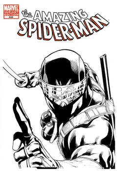 SnakeEyes vs Spider-Man