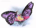 Butterfly Fairies