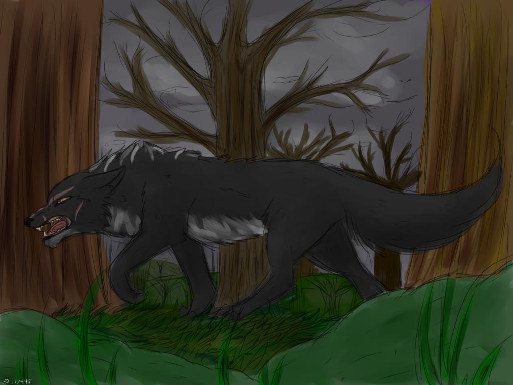 Wolf by Bluiestar