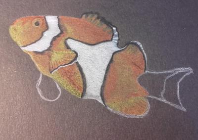 Clownfish W.I.P (2) by Kitten-Draws