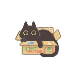 Black CAT BOX by AlpacaCarlesi