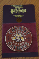 Chudley Cannons Pin