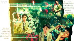 D.O. (EXO) wallpaper 5