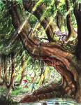 Rubel And Heath in the Sleeping Wood