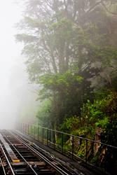 Journey towards the mist by TonyEP