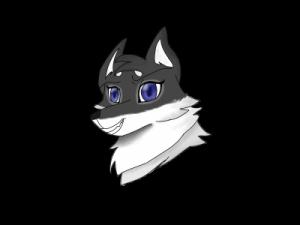 Dogpaws31's Profile Picture