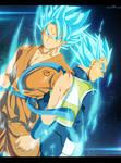 Goku And Vegeta super saiyan GODS
