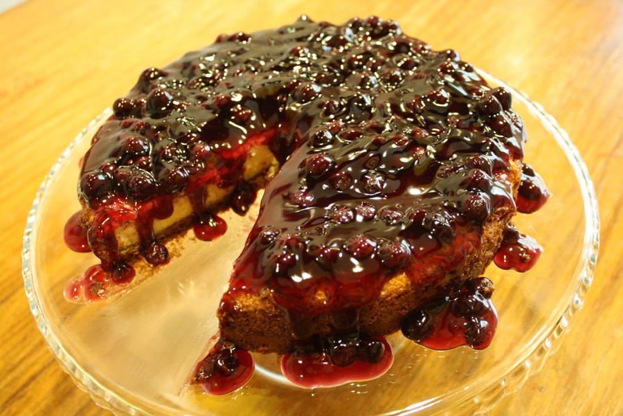 Baked Blueberry Cheesecake by xt-chronosage on deviantART
