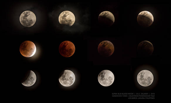 Super Blue Blood Moon (5-hour collage)