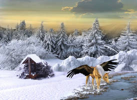 { Winter } by Kumona12