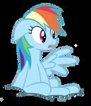 Rainbow Dash- huh?