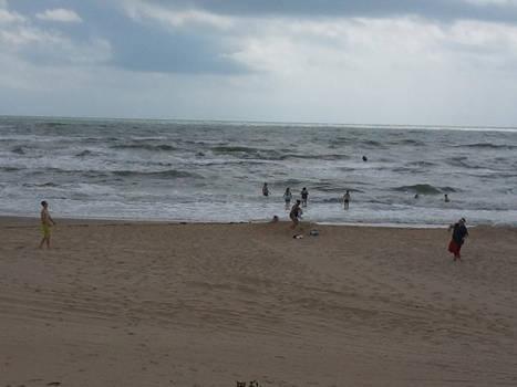 people on the beach
