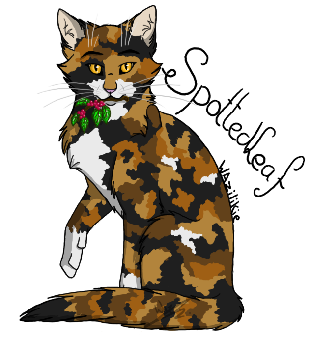warrior cats coloring pages spottedleaf - photo#34