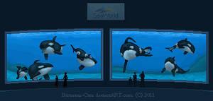 Orlando Orca Pixel Tank by Britannia-Orca