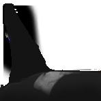 Ruffles J1 Dorsal.. by Britannia-Orca