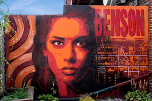 The Urban Elements- Benson Sunset by GK2000