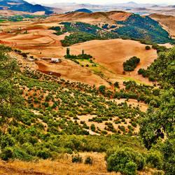 Farm by Gazounette