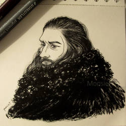 Benjen Stark by MonsieF