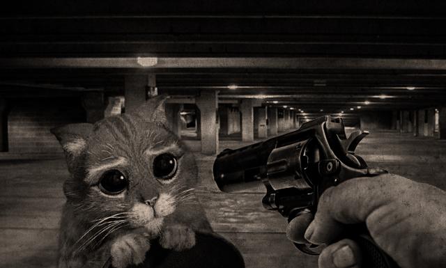 kill cat by reminiscence125